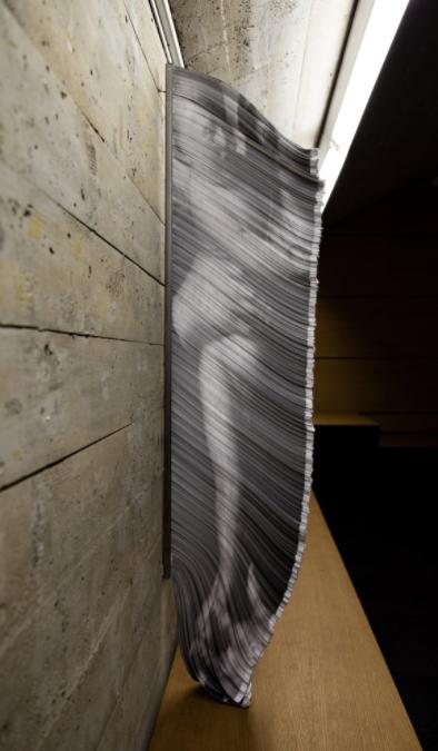 Giorgio Tentolini, Vulnerabili, 2016-17, 110x52 cm, stampa laser su circa 5400 strisciline di carta bianca