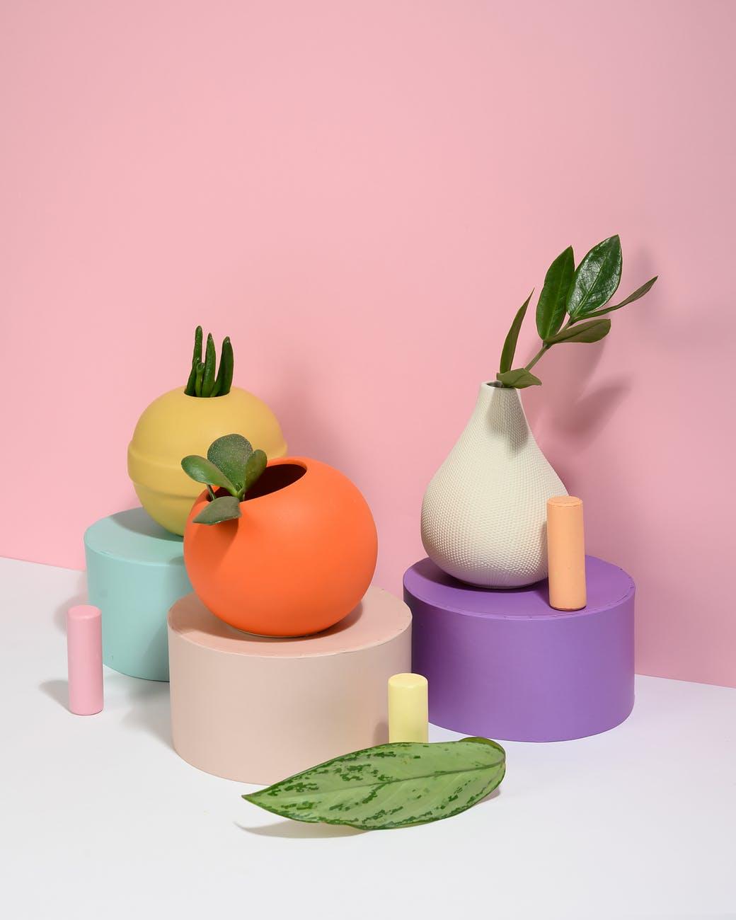art leaves colorful plants